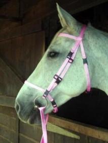 pink-bridle.jpg