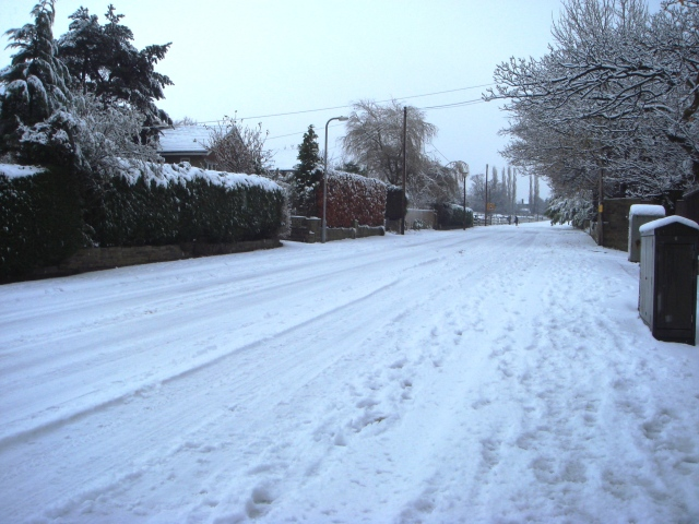 snow-dec-081