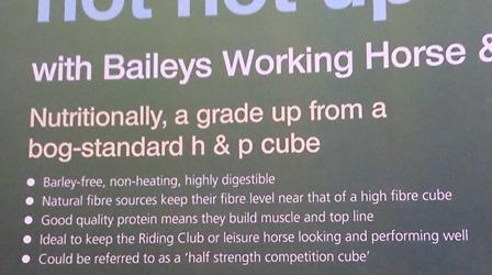 baileys rider mag copy